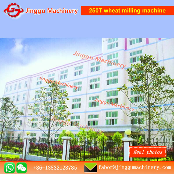 6FTF250T wheat milling machine|250T maize flour milling machine